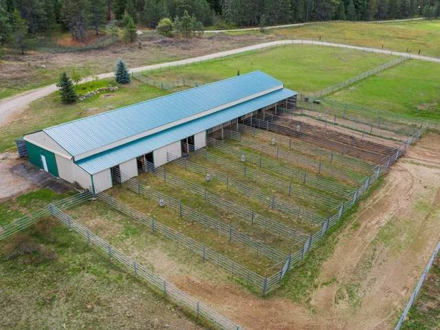 35810 N Milan Elk Rd, Chattaroy, WA 99003 (#201923798) :: The Spokane Home Guy Group