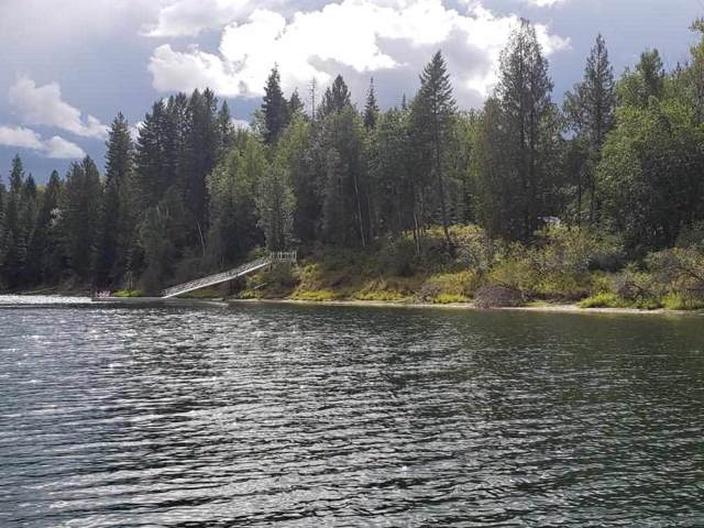 495 Ibbetson Dr, Ione, WA 99139 (#201923878) :: Top Spokane Real Estate