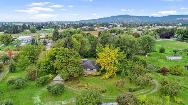 3518 N Molter Rd, Otis Orchards, WA 99027 (#201924528) :: The Synergy Group