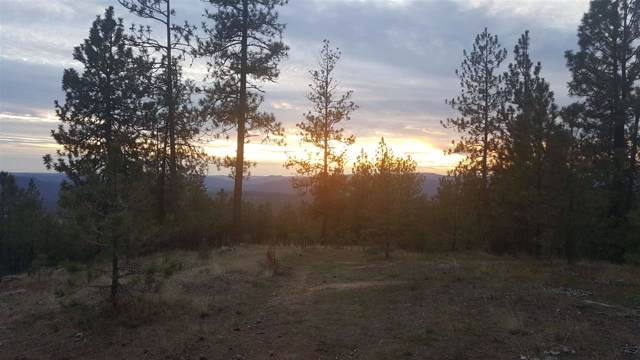 Corkscrew Canyon Rd, Tumtum, WA 99034 (#201924652) :: The Spokane Home Guy Group