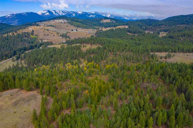 XXXX Prouty Corner Loop Rd, Colville, WA 99114 (#201924676) :: Keller Williams Realty Colville
