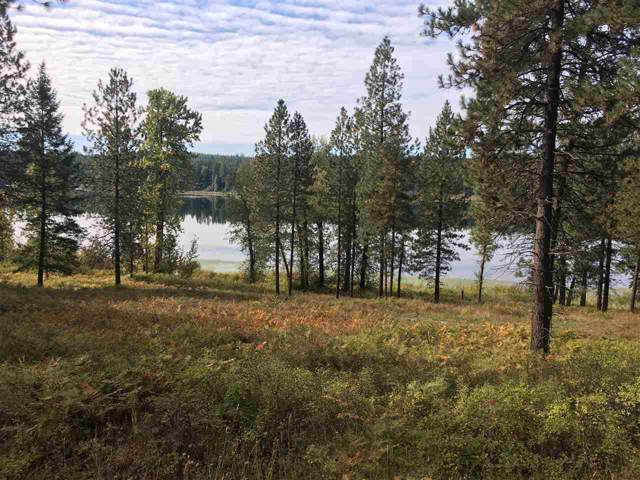 221x E Sandy Beach Rd Lot B, Elk, WA 99009 (#201924824) :: Keller Williams Realty Colville