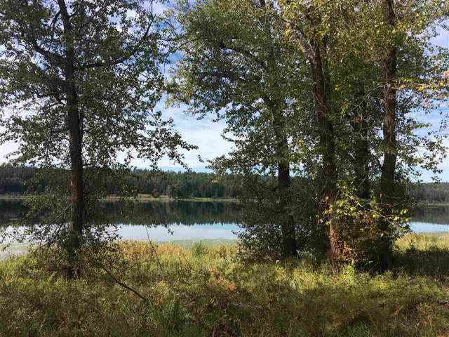 221x E Sandy Beach Rd Lot A, Elk, WA 99009 (#201924958) :: Keller Williams Realty Colville
