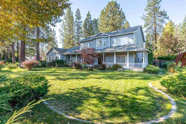 16621 N Primrose Ln, Nine Mile Falls, WA 99026 (#201925052) :: The Spokane Home Guy Group