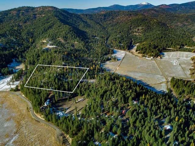XXX Shady Ln, Newman Lake, WA 99025 (#201925724) :: The Synergy Group