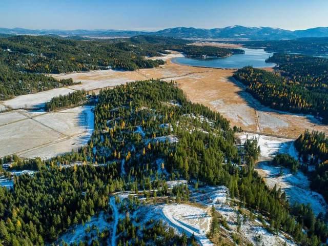 xxx N Thompson Creek Rd 57286.9070 & 57, Newman Lake, WA 99025 (#201925725) :: The Synergy Group