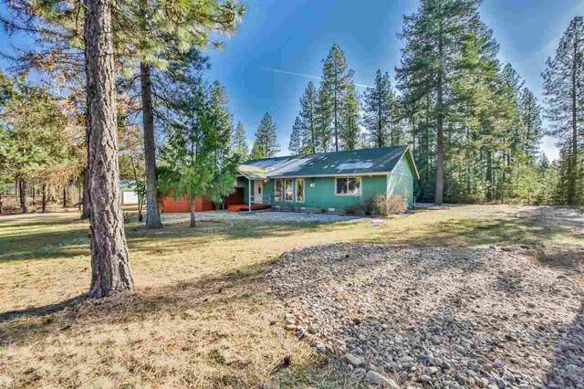 4040 Lacy Ln, Loon Lake, WA 99148 (#201925858) :: THRIVE Properties