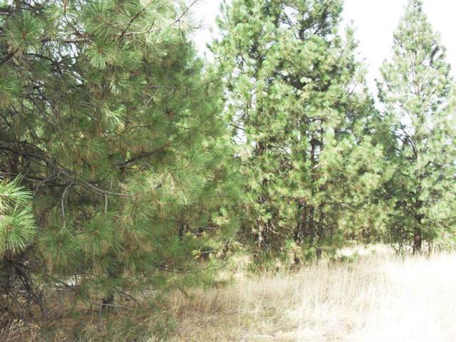 TBD Peachcrest Rd, Kettle Falls, WA 99141 (#201925871) :: The Hardie Group