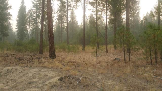 XX Lot 1 Eagle River Way, Kettle Falls, WA 99141 (#201926028) :: The Synergy Group