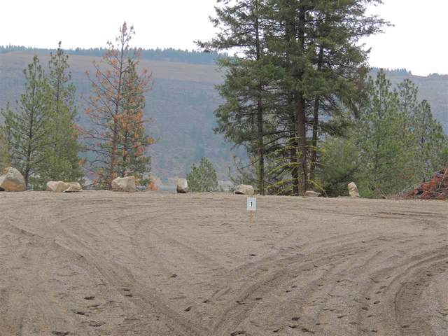 Lot #1 Narrows North Short Plat, Davenport, WA 99122 (#201926300) :: The Synergy Group