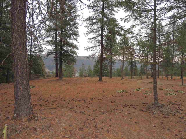 Lot #2 Narrows North Short Plat, Davenport, WA 99122 (#201926301) :: The Synergy Group