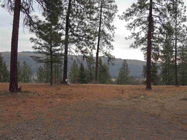 Lot #3 Narrows North Short Plat, Davenport, WA 99122 (#201926302) :: The Synergy Group
