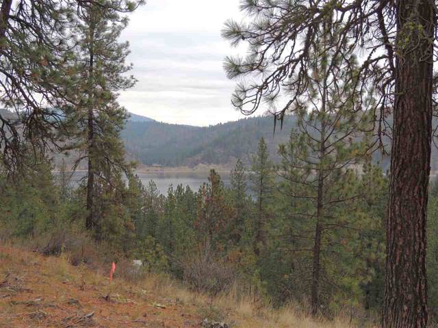 Lot #5 Narrows South Short Plat, Davenport, WA 99122 (#201926304) :: Top Agent Team