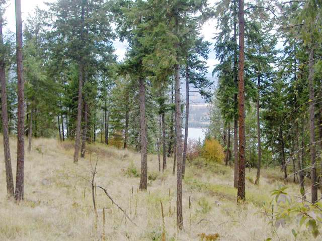 XXXX Gold Edge Mine Rd Lot A, Kettle Falls, WA 99141 (#201926438) :: Keller Williams Realty Colville