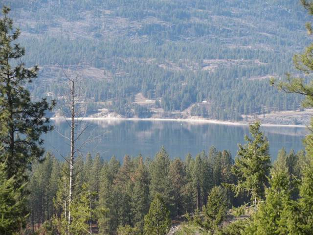 XXXX Gold Edge Mine Rd Lot L, Kettle Falls, WA 99141 (#201926444) :: The Synergy Group