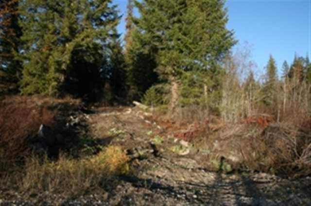 00 Quartz Rd Lot 3, Newport, WA 99156 (#201926634) :: THRIVE Properties