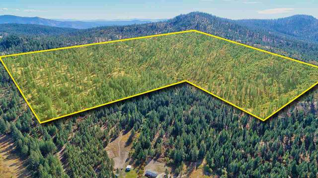 000 Happy Hill Rd, Tumtum, WA 99034 (#201926751) :: Chapman Real Estate