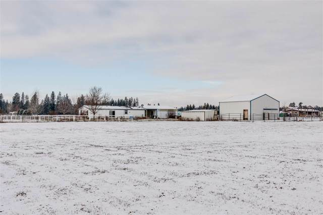 22010 N Chronicle Ln, Chattaroy, WA 99003 (#201926902) :: The Spokane Home Guy Group