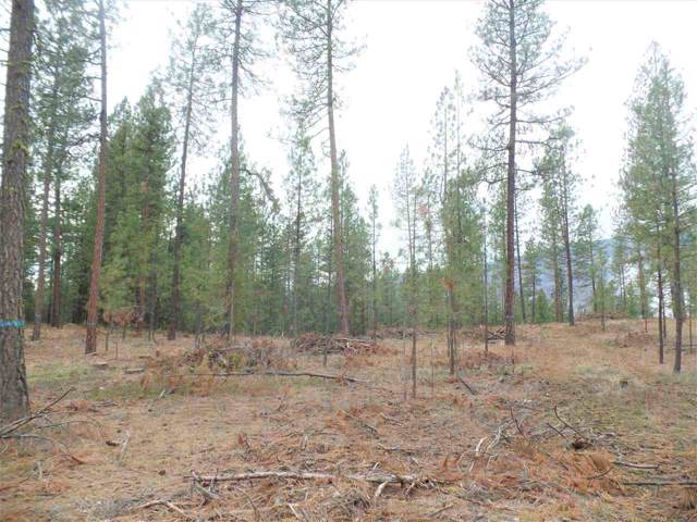 Lot #3 Fumi Cir, Kettle Falls, WA 99141 (#201926911) :: The Spokane Home Guy Group
