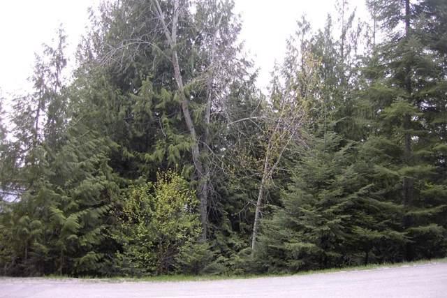 4103 Southwood Shores Rd, Loon Lake, WA 99148 (#201927480) :: The Spokane Home Guy Group