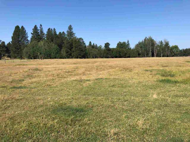 360XX Conklin Rd, Elk, WA 99009 (#202010050) :: The Synergy Group