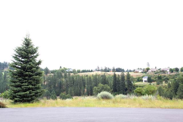 11319 S Fairway Ridge Ln, Spokane, WA 99224 (#202010114) :: Prime Real Estate Group