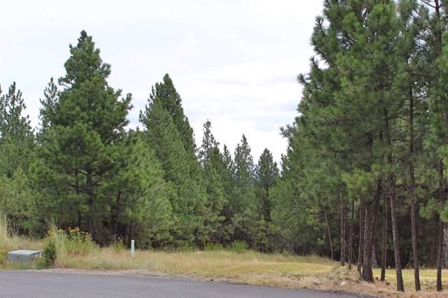 13419 S Lookout Ln, Spokane, WA 99224 (#202010115) :: Northwest Professional Real Estate