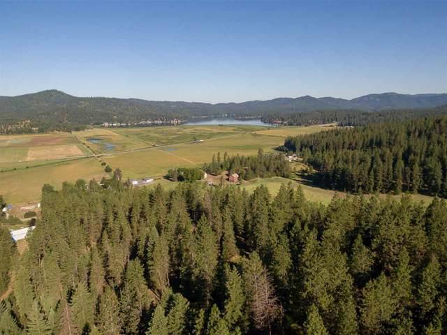107xx N Mccoy Rd, Newman Lake, WA 99025 (#202010281) :: Top Spokane Real Estate