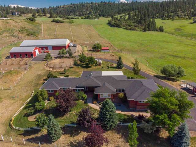 9613 E Mt Spokane Park Dr, Mead, WA 99021 (#202010293) :: RMG Real Estate Network