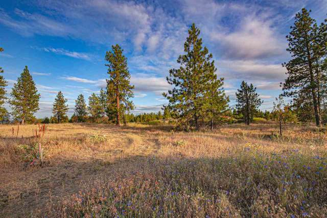 3941 W Grandview Ave Lot 2.2, Spokane, WA 99224 (#202010346) :: Prime Real Estate Group