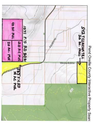 542 Tillacum Trl, Newport, WA 99156 (#202010353) :: Prime Real Estate Group