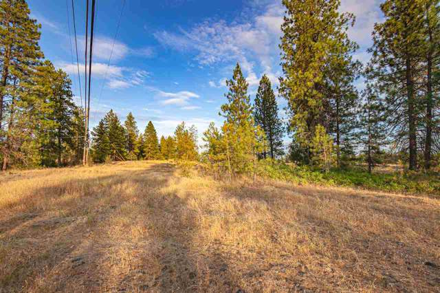 3718 W 21st Ave Lot 2.5, Spokane, WA 99224 (#202010427) :: The Spokane Home Guy Group