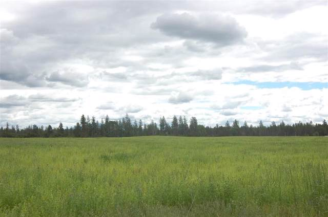 xxx7 Fausett Rd Tract 7, Deer Park, WA 99006 (#202010455) :: The Synergy Group
