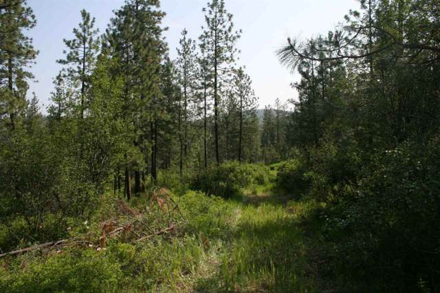 0004 Rocky Top Way Lot D, Deer Park, WA 99006 (#202010645) :: The Hardie Group