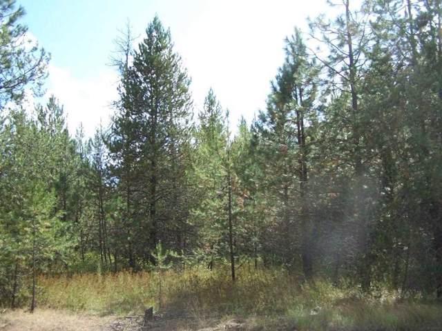 TBD Agar Rd, Loon Lake, WA 99148 (#202010727) :: Chapman Real Estate