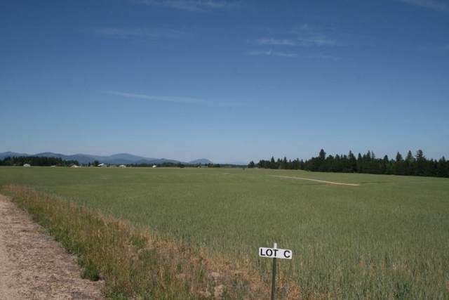 8312 W Owens Rd Tract #C, Deer Park, WA 99006 (#202010750) :: The Spokane Home Guy Group