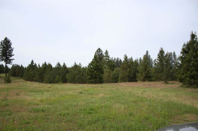 Parcel A N Castle Ln 10 Acres Ln, Chattaroy, WA 99003 (#202010800) :: Top Spokane Real Estate