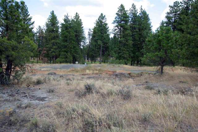 XX Clear Lake Rd, Medical Lake, WA 99022 (#202010809) :: The Hardie Group