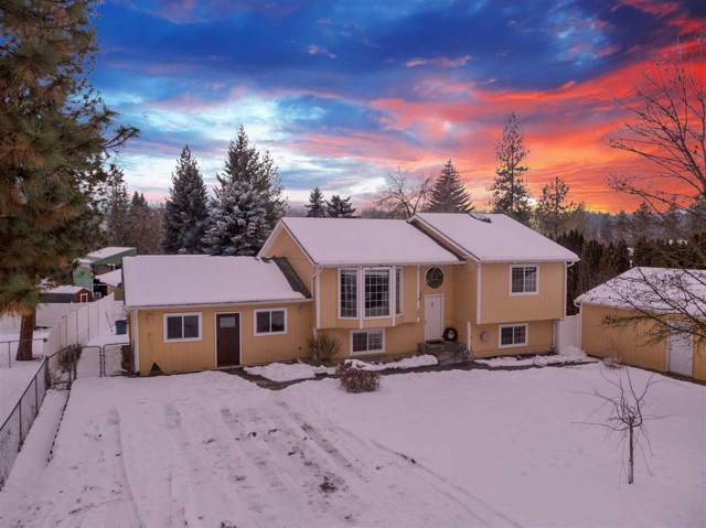 108 E Wynot Dr, Nine Mile Falls, WA 99026 (#202010825) :: The Hardie Group