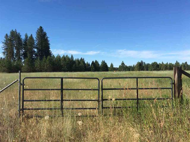 6606 S Spotted Rd, Cheney, WA 99004 (#202010873) :: Top Agent Team