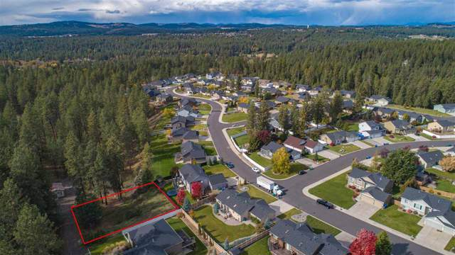 2903 E Lane Park Rd, Spokane, WA 99021 (#202010902) :: Prime Real Estate Group