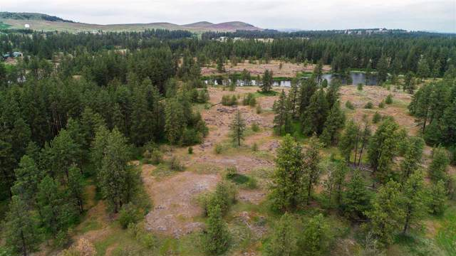 xxxx S Clear Lake Rd, Medical Lake, WA 99022 (#202011022) :: Top Agent Team