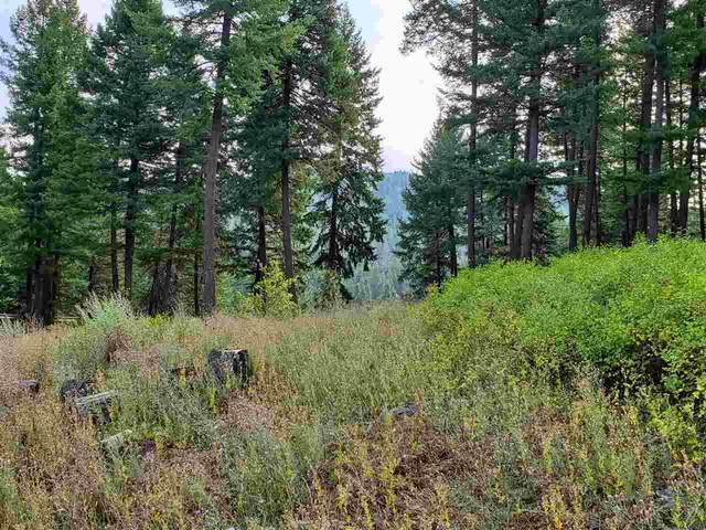 159xx N Forker Rd, Mead, WA 99021 (#202011201) :: The Spokane Home Guy Group