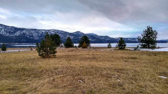 Lot 6 Martin Creek Dr, Kettle Falls, WA 99141 (#202011256) :: The Synergy Group