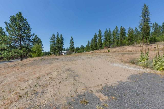 6050 N Sunview Way, Nine Mile Falls, WA 99026 (#202011356) :: The Spokane Home Guy Group