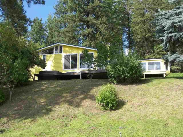 42217 N Sylvan Rd, Elk, WA 99009 (#202011362) :: The Spokane Home Guy Group