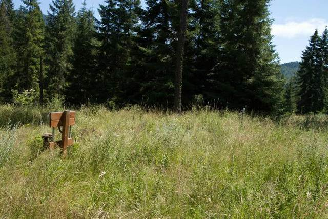 767 Finley Gulch Rd, Colville, WA 99114 (#202011369) :: The Hardie Group