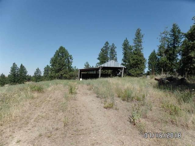 000 E Foothills Rd, Spokane, WA 99217 (#202011377) :: Keller Williams Realty Colville