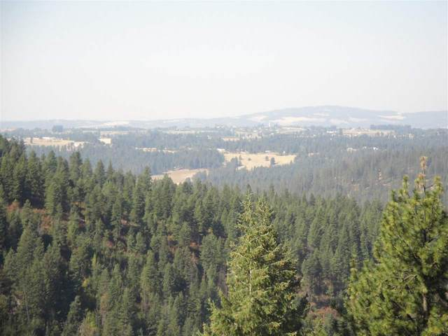 201X1 Mt. Spokane Park Drive Dr, Mead, WA 99021 (#202011434) :: Prime Real Estate Group