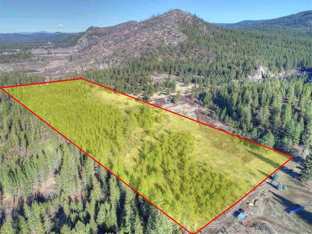 4902 B Rail Canyon Rd Tax Segregation, Springdale, WA 99173 (#202011454) :: RMG Real Estate Network